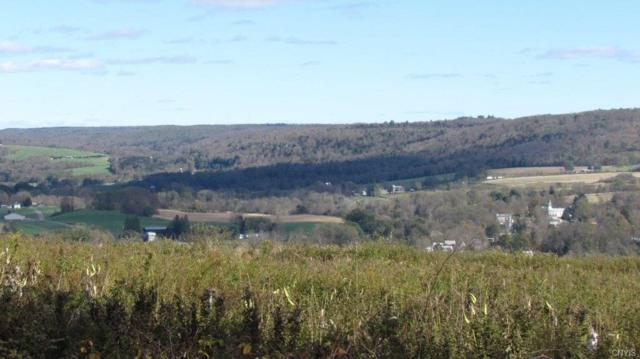 3472 Hubbards Hill Road, Taylor, NY 13040 (MLS #S1156618) :: BridgeView Real Estate Services