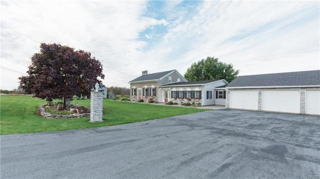 19049 Cady Road, Hounsfield, NY 13601 (MLS #S1156919) :: Robert PiazzaPalotto Sold Team