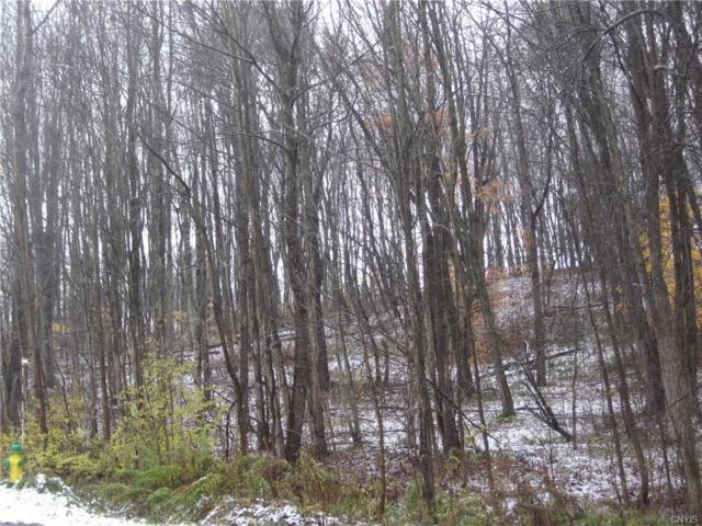 LOT 17 Wood Ridge Lane, Volney, NY 13069 (MLS #S1157175) :: Thousand Islands Realty