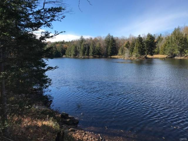 242-B Jerry Savarie Road, Indian Lake, NY 12842 (MLS #S1157317) :: Thousand Islands Realty