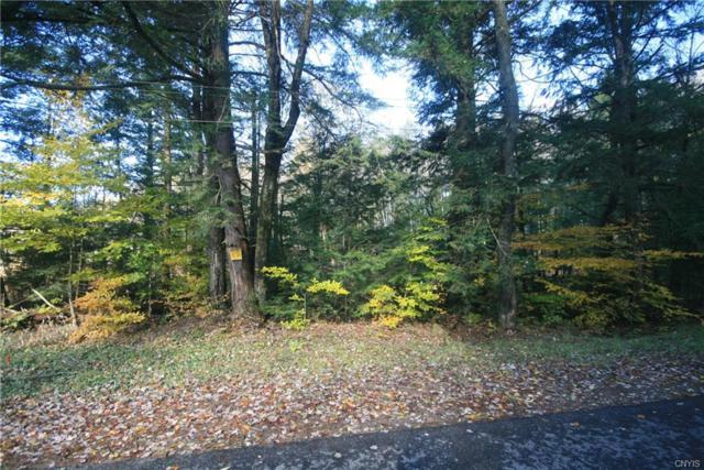 Lot 3 Whiskey Island Rd, Camden, NY 13316 (MLS #S1157561) :: BridgeView Real Estate Services