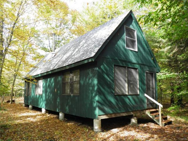 8536 Fish Creek Road, Croghan, NY 13327 (MLS #S1158342) :: BridgeView Real Estate Services