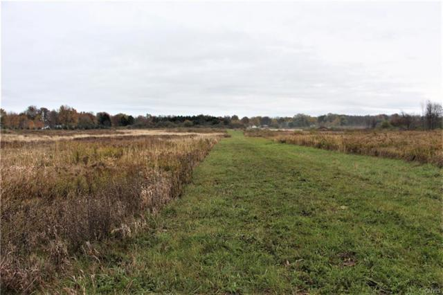 1 Co Route 6, Cape Vincent, NY 13618 (MLS #S1158514) :: MyTown Realty