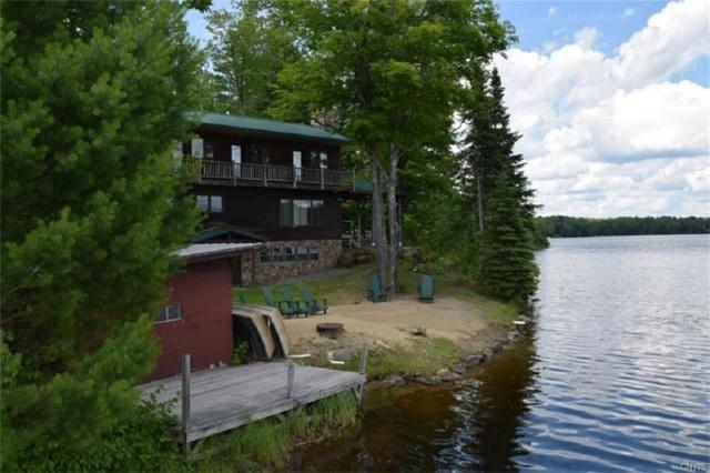 337A Big Brook Road, Indian Lake, NY 12842 (MLS #S1158705) :: Thousand Islands Realty
