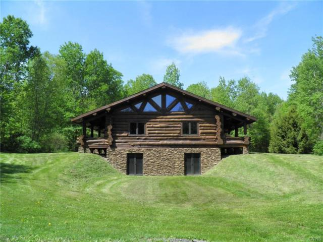 12865 White Cemetery Road, Ira, NY 13074 (MLS #S1158781) :: The Rich McCarron Team