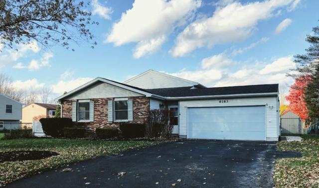 6163 Sitka Drive, Cicero, NY 13039 (MLS #S1159525) :: BridgeView Real Estate Services