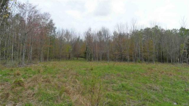 0 Bell Hill Road Lot#3, Deerfield, NY 13502 (MLS #S1159551) :: Updegraff Group