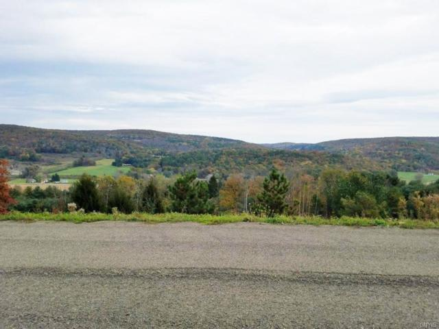 00 Mersereau Lane, Lindley, NY 14858 (MLS #S1159566) :: Thousand Islands Realty