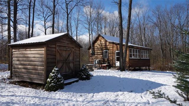 0 Owl Ridge Road, Williamstown, NY 13493 (MLS #S1159750) :: BridgeView Real Estate Services