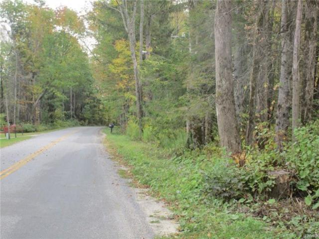 0 Dairy Hill Road, Salisbury, NY 13365 (MLS #S1160179) :: Thousand Islands Realty