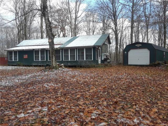 72 Coey Hill Drive, Orwell, NY 13426 (MLS #S1160874) :: Thousand Islands Realty