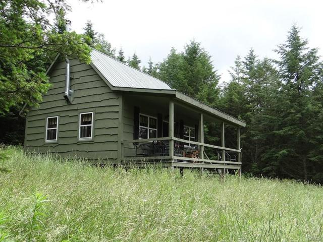 00 Freetown Hoxie Gorge Road, Freetown, NY 13040 (MLS #S1161299) :: Updegraff Group