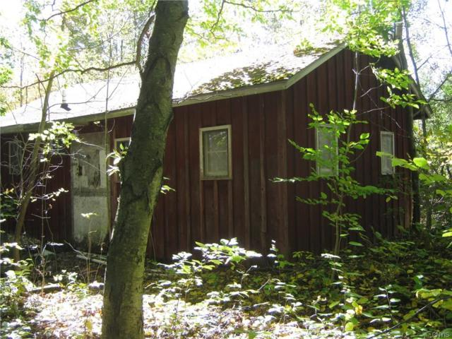 00 Briggs Hill Road, Van Etten, NY 14889 (MLS #S1163149) :: Thousand Islands Realty