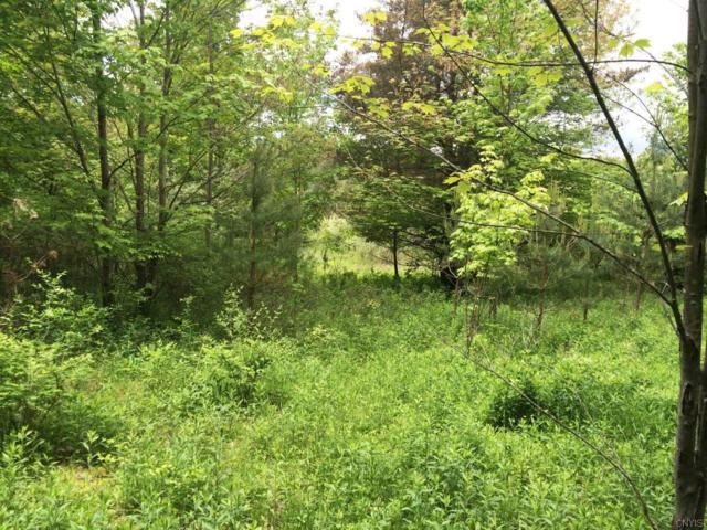 00 Spring Hill Road, Cuba, NY 14727 (MLS #S1163633) :: Thousand Islands Realty