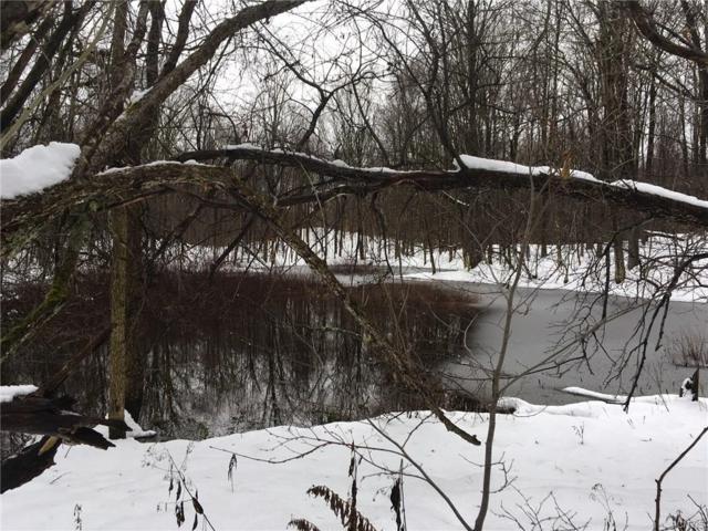 0 Hidden Meadow Road, Williamstown, NY 13493 (MLS #S1163890) :: BridgeView Real Estate Services