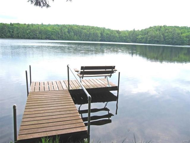 417 Woodworth Lake Trail, Bleecker, NY 12078 (MLS #S1164866) :: Thousand Islands Realty