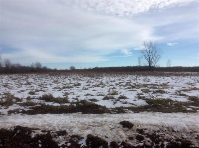 0 Youngs Road, Hounsfield, NY 13685 (MLS #S1165062) :: Thousand Islands Realty