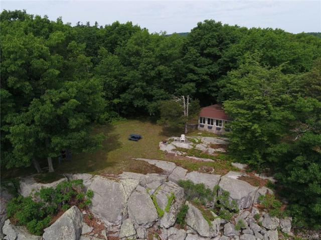 0000 Grindstone island, Clayton, NY 13624 (MLS #S1165206) :: Thousand Islands Realty