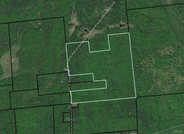 0 Brownville Road, Lyonsdale, NY 13368 (MLS #S1165839) :: Thousand Islands Realty