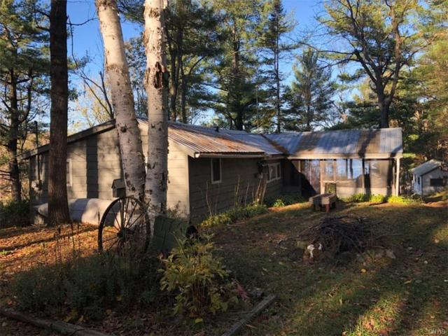116 Mile Arm Bay Road, Hammond, NY 13646 (MLS #S1165892) :: Updegraff Group