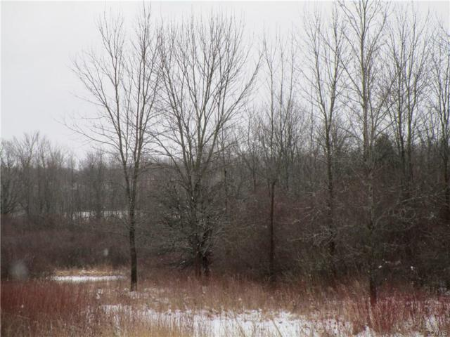 0 Nys Route 12, Orleans, NY 13624 (MLS #S1167179) :: MyTown Realty