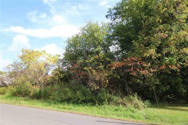 0 Keyes Road, Deerfield, NY 13502 (MLS #S1168102) :: Robert PiazzaPalotto Sold Team