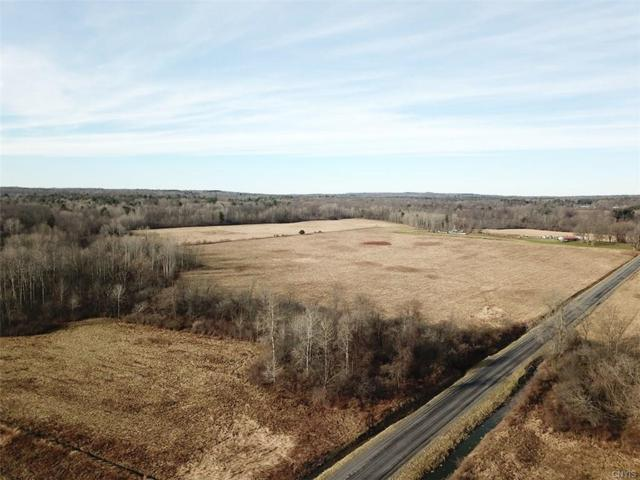 00 Caswell Road, Dryden, NY 13068 (MLS #S1168393) :: Thousand Islands Realty