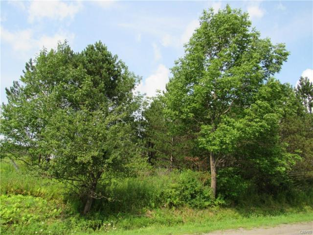 0 Midlum Road, Cuyler, NY 13158 (MLS #S1169220) :: Robert PiazzaPalotto Sold Team