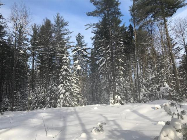 00 Stillwater Road, Watson, NY 13367 (MLS #S1169372) :: BridgeView Real Estate Services