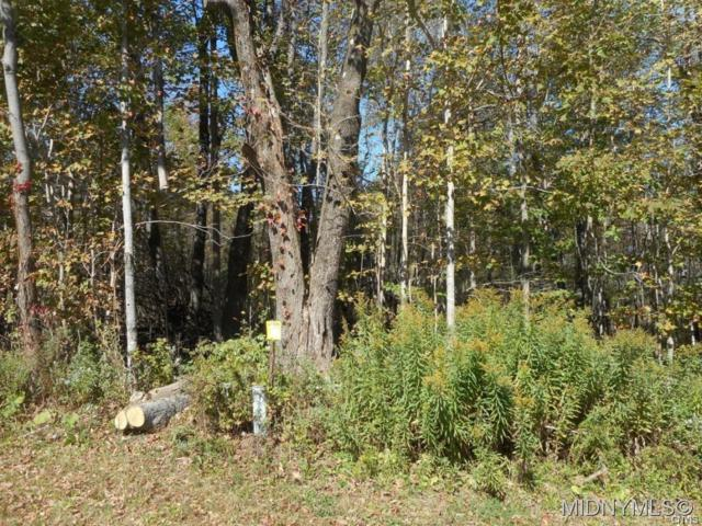 0 Bethel/ Phillips Road, Steuben, NY 13354 (MLS #S1169593) :: Thousand Islands Realty