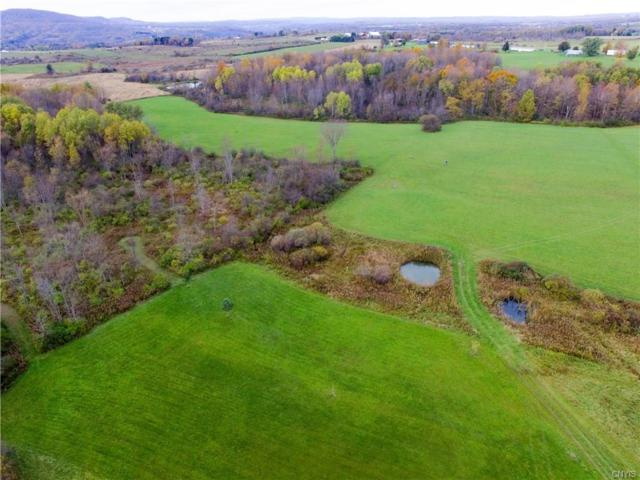 0 Casler Road, Fairfield, NY 13406 (MLS #S1169753) :: 716 Realty Group