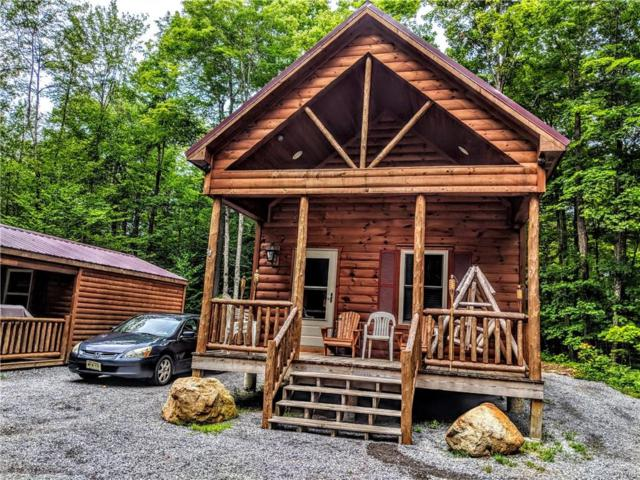 12081 Popple Knoll Road, Croghan, NY 13327 (MLS #S1170141) :: BridgeView Real Estate Services