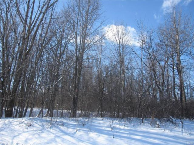 0 Schell Road, Oppenheim, NY 13452 (MLS #S1170481) :: Thousand Islands Realty