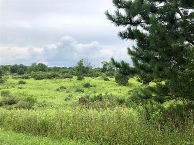 1777 Pompey Center Road, Fabius, NY 13063 (MLS #S1171062) :: Thousand Islands Realty