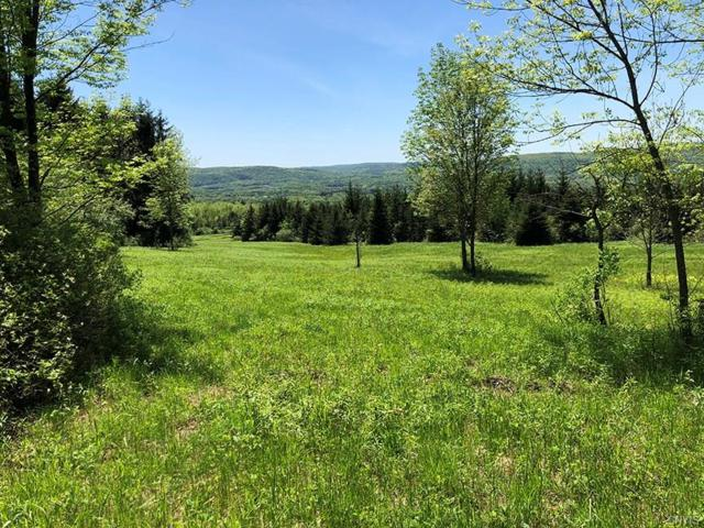 195 Johnson Road, Kirkwood, NY 13795 (MLS #S1171302) :: Thousand Islands Realty