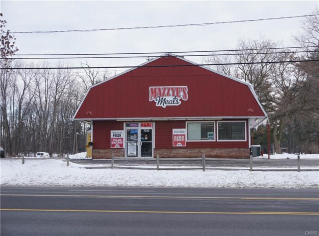 7252 Oswego Road, Salina, NY 13090 (MLS #S1171669) :: MyTown Realty