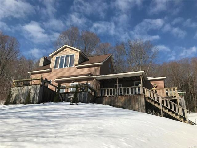 10041 Us Hwy 20, Plainfield, NY 13491 (MLS #S1172119) :: Thousand Islands Realty