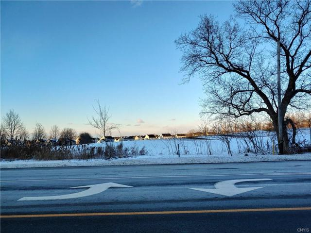 0 Route 5 West, Sullivan, NY 13037 (MLS #S1172531) :: The Rich McCarron Team