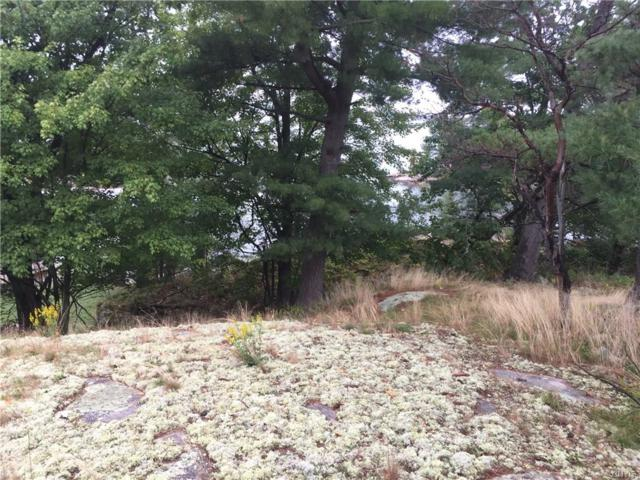 0 Kring Point Road, Alexandria, NY 13679 (MLS #S1172919) :: Updegraff Group