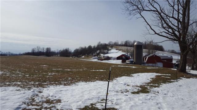 10232 Cedar Lake Road, Litchfield, NY 13322 (MLS #S1173103) :: Thousand Islands Realty