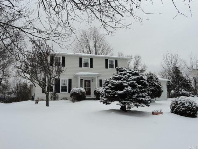 6410 Terese Terrace, Dewitt, NY 13078 (MLS #S1173496) :: MyTown Realty