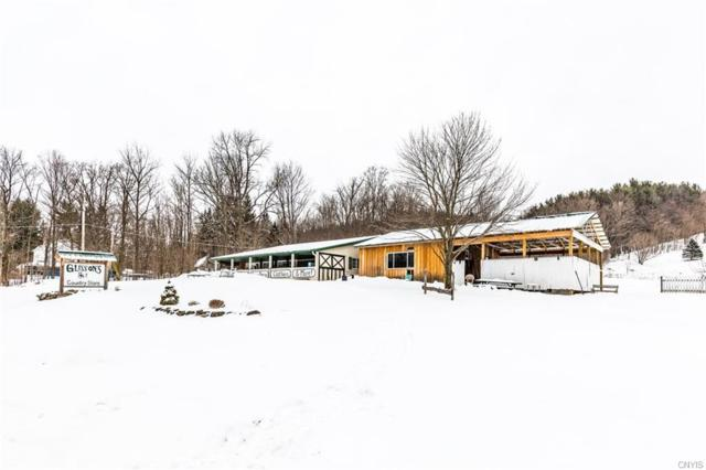 00 E Lake Road, De Ruyter, NY 13052 (MLS #S1174198) :: BridgeView Real Estate Services