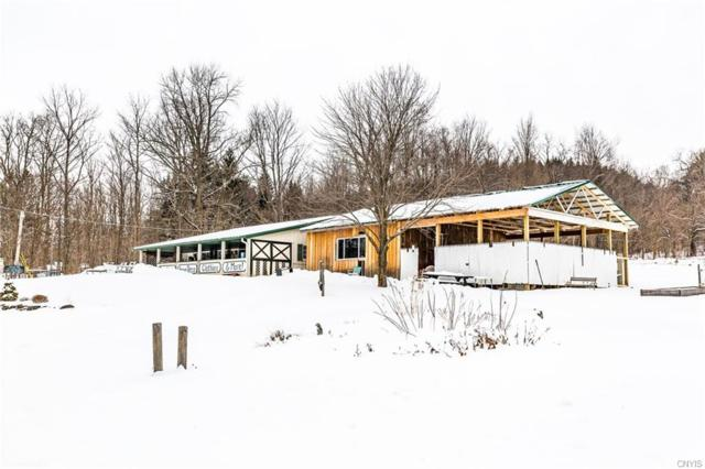 Country Store  on E Lake Road, De Ruyter, NY 13052 (MLS #S1174446) :: BridgeView Real Estate Services
