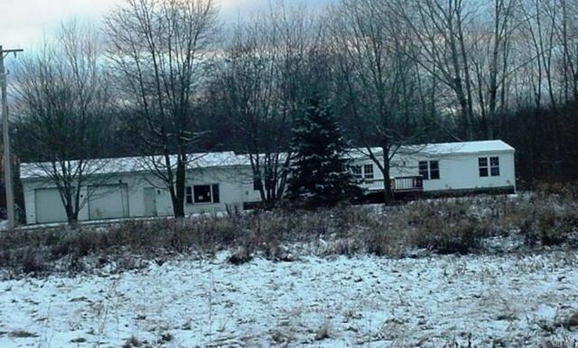 1421 County Route 7, Hannibal, NY 13126 (MLS #S1175547) :: Robert PiazzaPalotto Sold Team