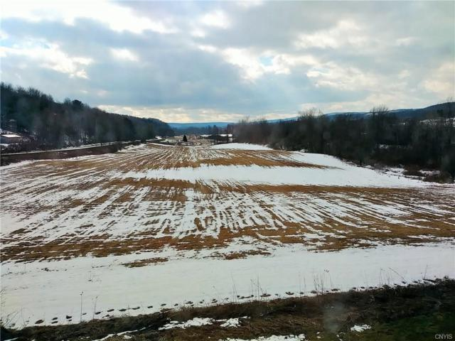 000 County Highway 18, Pittsfield, NY 13411 (MLS #S1176061) :: BridgeView Real Estate Services