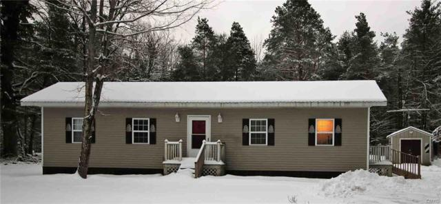 11887 Dutch Hill Road, Forestport, NY 13338 (MLS #S1176080) :: BridgeView Real Estate Services