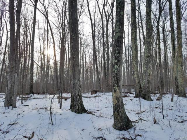 00 County Route 24, Cameron, NY 14819 (MLS #S1176961) :: Thousand Islands Realty