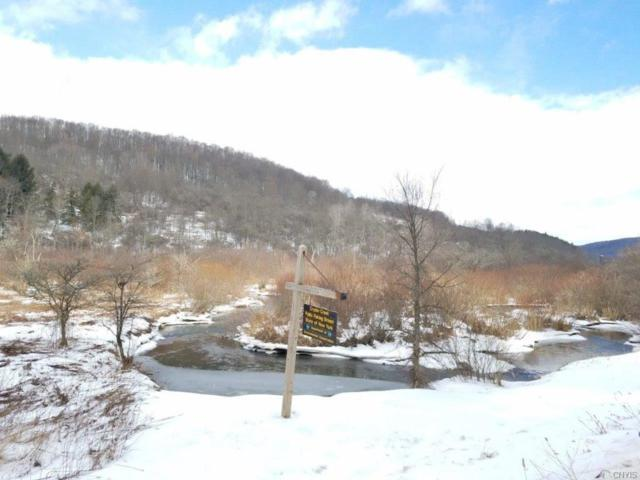 00 State Route 248, Independence, NY 14877 (MLS #S1177182) :: Thousand Islands Realty