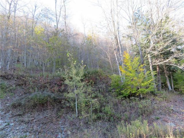 2390 State Highway 26, Otselic, NY 13155 (MLS #S1177789) :: BridgeView Real Estate Services