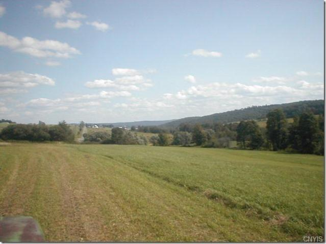 000 Telephone Road, Taylor, NY 13040 (MLS #S1178367) :: BridgeView Real Estate Services